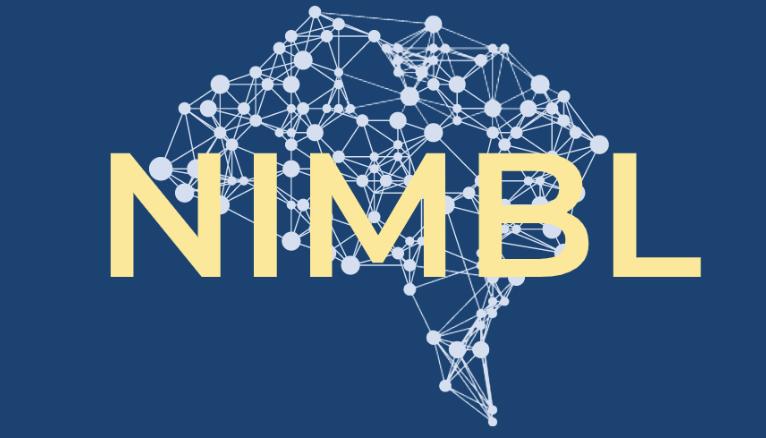 -Neuroplasticity, Imagery, and Motor Behaviour Laboratory-